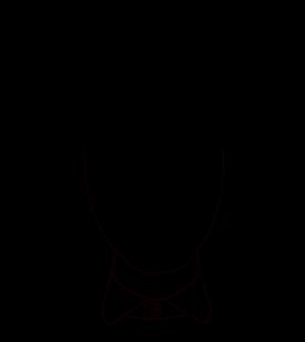 Forme-Visage-Ovale