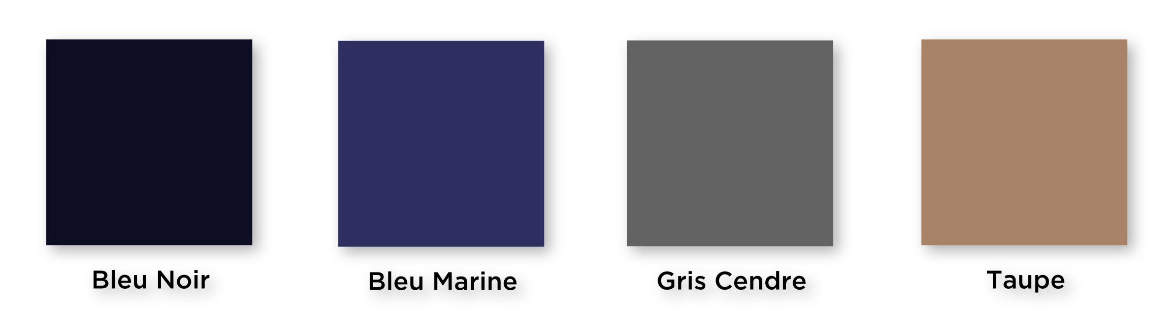 Palette de couleur cheveux gris